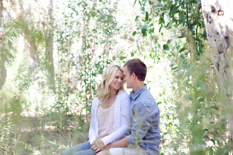 forest-engagement-3