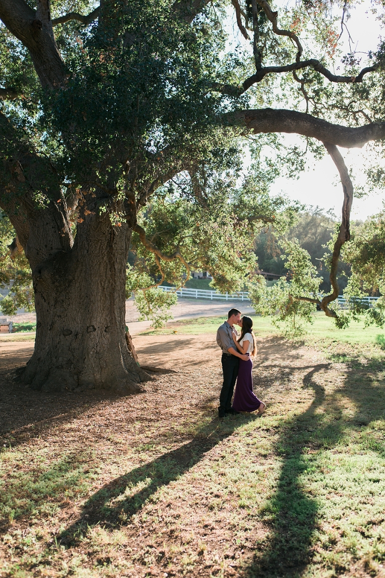 oak-tree-engagement_0281